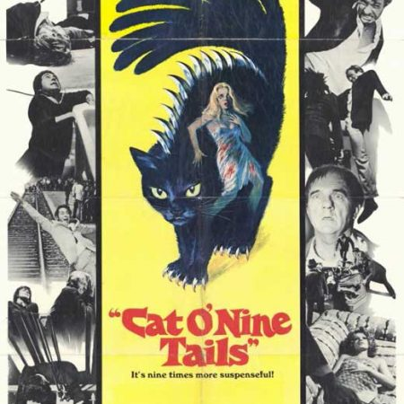 Cat O'Nine Tails movie poster